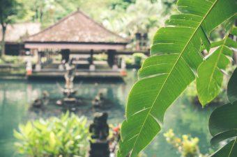 Majówka na Bali